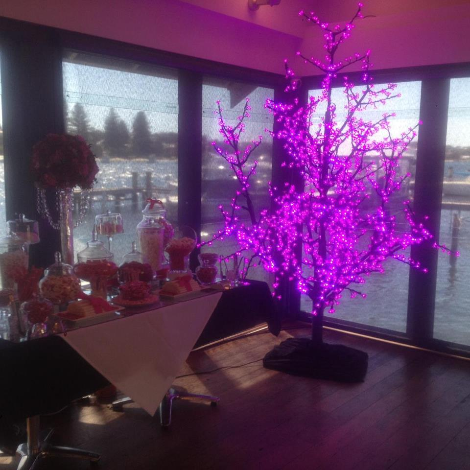 Led Tree Furniture Hire Perth Eluma Events Solutions