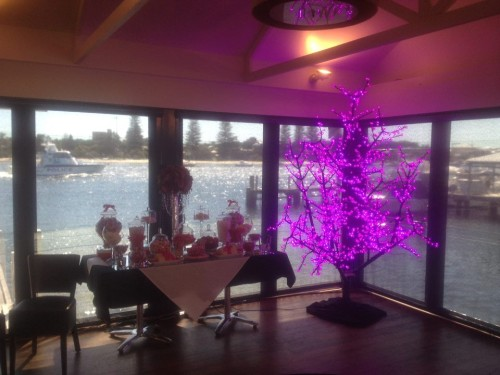 Decorative LED Blossom Trees